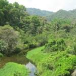 la Colombie renferme 5% de la biodiversite sur terre
