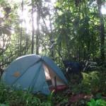 derniere nuit au Venezuela,dans la jungle