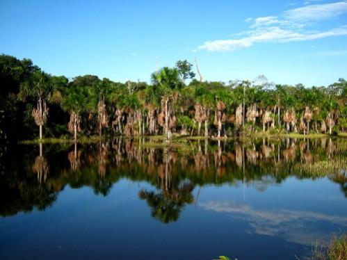 Le parc, peut montagneux renferme de nombreux marais