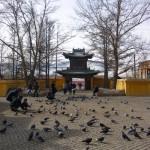 """La """"Notre-Dame"""" d'Oulan-baator, avec ses passants et ses pigeons bien nourris"""
